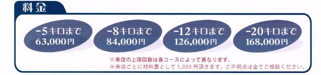 epijenetic_price